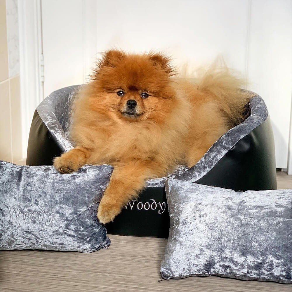 Personalised dog beds from Custom Gifts